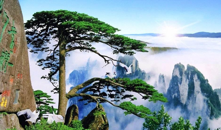 """中国的""""五岳"""""""